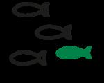 icona-06