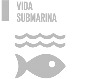 ODS 7 vida submarina