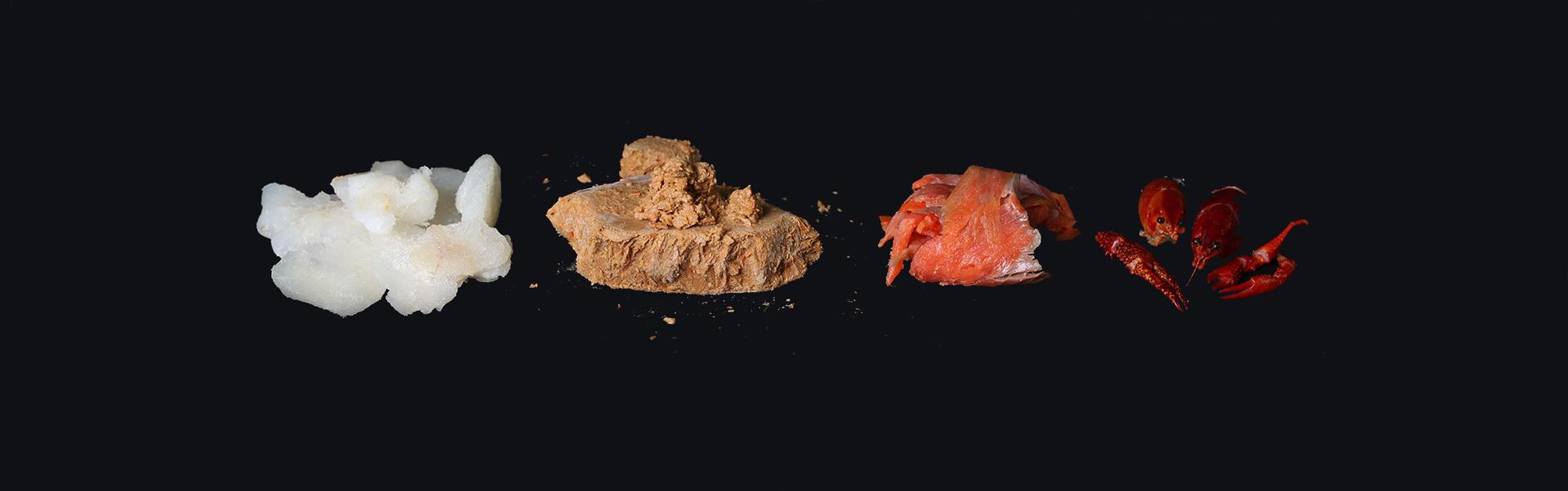 Productos de pescado y marisco Iberland