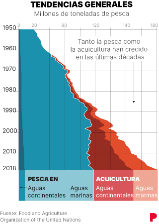 Como consumir pescado sostenible